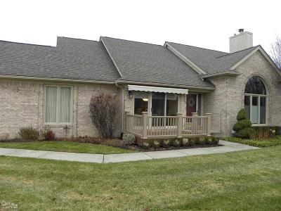 Sterling Heights Condo/Townhouse For Sale: 4559 Reflections