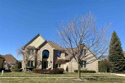 Shelby Twp Single Family Home For Sale: 14141 Patterson