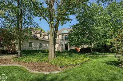 Bruce Twp Single Family Home For Sale: 70901 Carnegie Lane