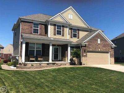 Macomb Twp Single Family Home For Sale: 49479 Gaviota