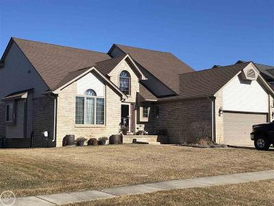 Macomb Twp Single Family Home For Sale: 50493 Steeh