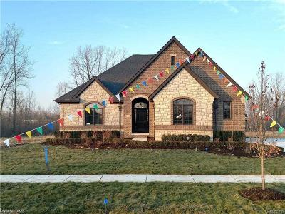 Washington Twp Single Family Home For Sale: 11769 Forest Brook
