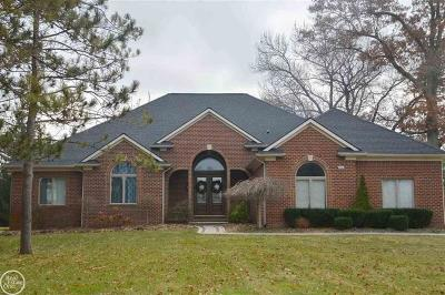 Addison Twp Single Family Home For Sale: 246 Sequoia