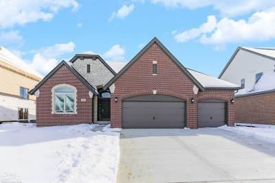 Macomb Twp Single Family Home For Sale: 49454 Bingham Lane