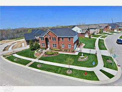 NOVI Single Family Home For Sale: 41710 Steinbeck