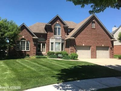 Rochester Hills, Rochester Single Family Home For Sale: 1295 Tulberry Cir