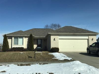 MACOMB Single Family Home For Sale: 22507 Clearwater