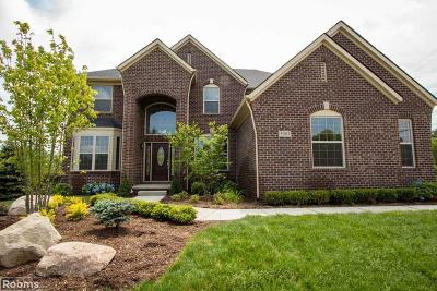 Washington Twp Single Family Home For Sale: 68230 Hillside Ln