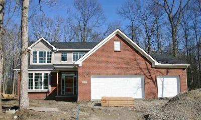 Brownstown Twp Single Family Home For Sale: 21059 Marvin Ave