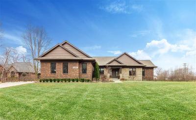 Washington Twp Single Family Home For Sale: 62991 Braun Dr