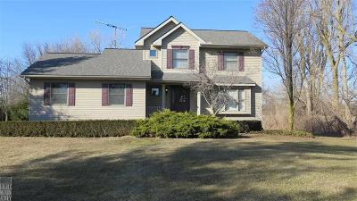 Ray Twp Single Family Home For Sale: 17099 28 Mile Rd