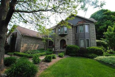 Shelby Twp MI Single Family Home For Sale: $475,000