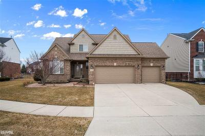 Macomb Twp Single Family Home For Sale: 21839 Goldenwillow Dr