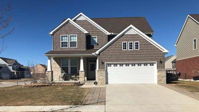 Wayne County Single Family Home For Sale: 8051 Herald