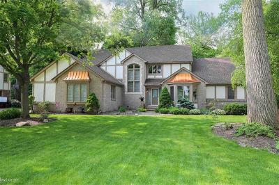 Shelby Twp Single Family Home For Sale: 11270 Silverlake Ct