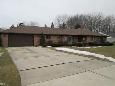 Chesterfield Twp Single Family Home For Sale: 33846 Roselawn
