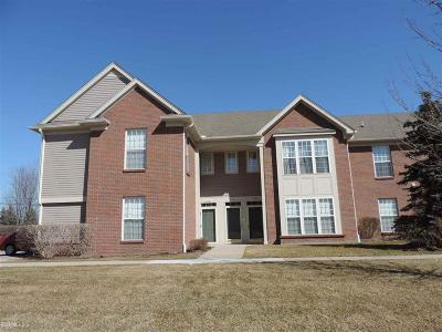 Chesterfield Twp Condo/Townhouse For Sale: 51834 Lionel Lane
