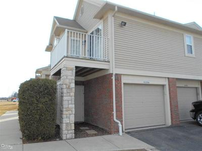 Macomb Twp Condo/Townhouse For Sale: 52204 Naugatuck