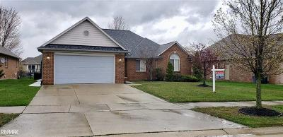 Macomb Twp Single Family Home For Sale: 51776 Battanwood Dr