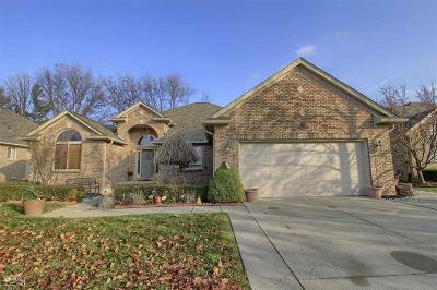 Clinton Twp Single Family Home For Sale: 41990 Witney Dr