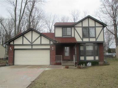Chesterfield Twp Single Family Home For Sale: 27056 Galassi St