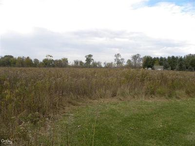 Armada Twp Residential Lots & Land For Sale: 15659 Reid Rd.