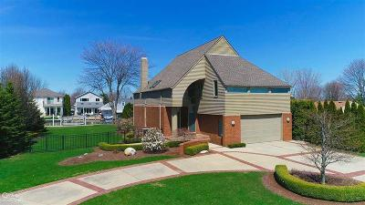 Harrison Twp Single Family Home For Sale: 32039 Riverdale