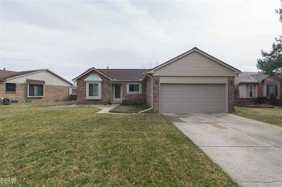 Macomb Twp Single Family Home For Sale: 46790 Partridge Creek