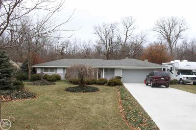 Troy Single Family Home For Sale: 365 Kirk Lane Dr.