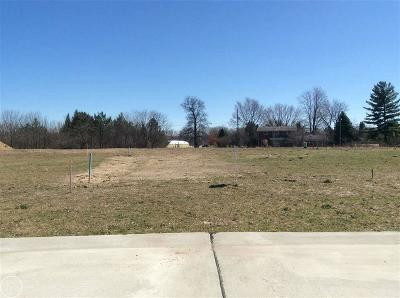 Shelby Twp Residential Lots & Land For Sale: 6693 Roseberry