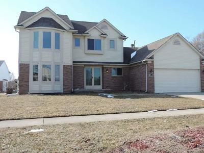 Macomb Twp Single Family Home For Sale: 46549 Creekside