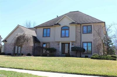 Troy Single Family Home For Sale: 1371 Country Dr.