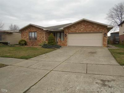 Macomb Twp Single Family Home For Sale: 46352 Apple