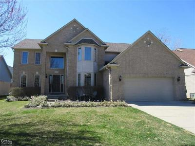 Macomb Twp Single Family Home For Sale: 48135 Thistle