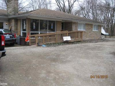 Troy Single Family Home For Sale: 5366 Rochester Rd