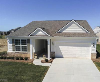 Lake Orion Single Family Home For Sale: 1125 Lark St