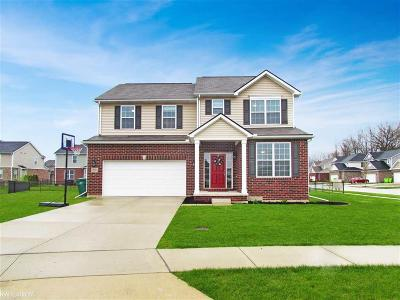 Macomb Twp Single Family Home For Sale: 23501 Sunnyside Circle