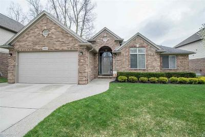 Sterling Heights Single Family Home For Sale: 13512 Woodland Ct