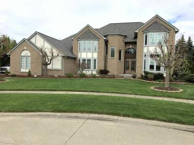 Shelby Twp Single Family Home For Sale: 53762 Briarcliff Ct.