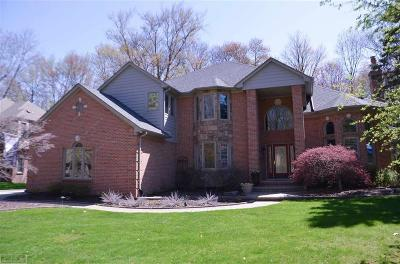 Shelby Twp Single Family Home For Sale: 53336 Hunters Crossing