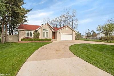 Sterling Heights Single Family Home For Sale: 37218 Curwood