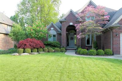 Harrison Twp Single Family Home For Sale: 28034 Norcross