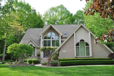 Shelby Twp Single Family Home For Sale: 12772 Towering Oaks Drive