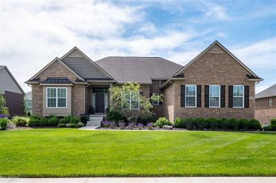 South Lyon Single Family Home For Sale: 23685 Stoneleigh Dr