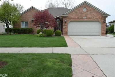 Macomb Twp Single Family Home For Sale: 49125 Dunhill Dr