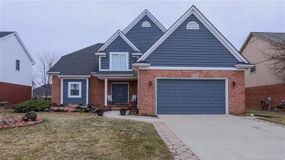 Macomb Twp Single Family Home For Sale: 47397 Woodberry Estates Dr