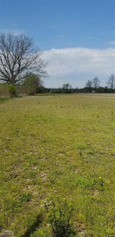 Residential Lots & Land For Sale: Windmill Lane Lot 2