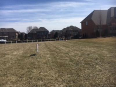 Chesterfield Twp Residential Lots & Land For Sale: 49516 Compass Point Drive