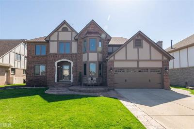 Macomb Twp Single Family Home For Sale: 52658 Sawmill Creek