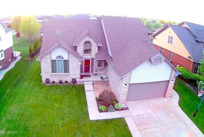 Macomb Twp Single Family Home For Sale: 50493 Steeh Dr